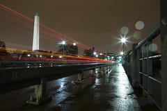Washington Monument in Rain at Night