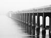 tay railbridge-295300