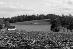 Fields (CHooks1231) Tags: trees tractor clouds barn corn farm hills rows 7d fields powerline plow treeline rolling 24105