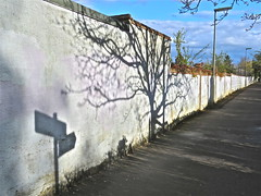 Shadowland (Deepgreen2009) Tags: sunlight white tree wall shadows patterns signpost footpath