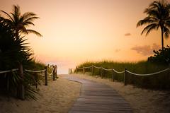 Road to Paradise (fgazioli) Tags: road travel sunset sky usa sun beach landscape orlando florida miami outdoor fl miamibeach goldenhour d5300 bestplacestogo