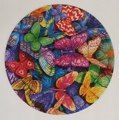 HEADS UP (pattakins) Tags: flowers birds toucan colorful puzzle tropical parrots jigsawpuzzle 350piece 14inchdiameter