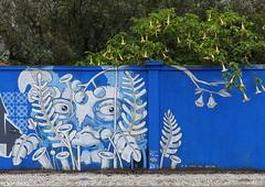 Verce si (BE'N 59. Street photographer) Tags: streetart lisboa lisbonne peo versesi