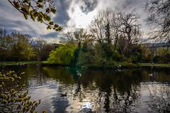 Saint Stephen green (Aresio) Tags: park ireland dublin lake water animals clouds ducks saintstephen