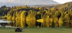 Geroldsee zum Sonnenaufgang-5302 Panoramabeschnitt (Holger Losekann) Tags: sonnenaufgang sunrise geroldsee see lake gerold bayern bavaria landschaft landscape bume trees wasser water absolutelystunningscapes