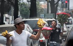 Fruit or Flowers (RiserDog) Tags: flowers fruit guatemala centralamerica sellers fruitseller flowerseller guatemalacity
