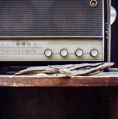 09:59 hashirimizu yokosuka  (masaaki miyara) Tags: mediumformat photographer ishootfilm 120film hasselblad analogue minimalist kodakfilm 80mm carlzeiss kodakmoment filmphotography hasselblad500cm portra160 filmisnotdead keepfilmalive keepexploring istillshootfilm specialshots minimalmood folkmagazine theanalogueproject buyfilmnotmegapixels vscofilm thephotographerwithin wearefilmfolks visualgang analoguevibes hasselbladfeatures
