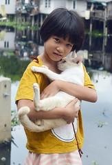 girl with her cat (the foreign photographer - ) Tags: white girl cat portraits thailand nikon child bangkok lard bang bua khlong bangkhen d3200 phrao jun42016nikon