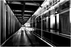Coursives (bong.13) Tags: blackandwhite monochrome noiretblanc lumire muse moderne lignes marseilles graphisme graphique bouchesdurhone mucem sonyrx100