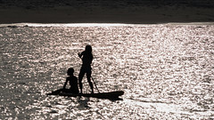 Silhouettes at twilight (Merrillie) Tags: waterscape women silhouette water sea outdoor twilight paddleboarding photography d5500 people bodyboarding nikon light