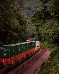 214 at a complete stop (bdunn829) Tags: railroad ns trains arrowhead norfolksouthern 214 railfanning ns214 arrowheadvalleyroad