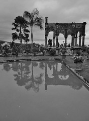 in a Balinese dream (SM Tham) Tags: asia indonesia bali island karangasem amlapura tamanujong waterpalace watergardens gardenstosee ruin folly pavilion pond water reflections palms trees pots plants shrubs view silhouettes blackandwhite monochrome outdoors