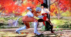 The Fierce Fighting: Lisa vs Momiji (Cliffather) Tags: stockings fight highheels boots cosplay videogame cleavage catsuit bunnygirl deadoralive doa catgirl 1000views fightinggame uhdtv koeitecmo ps4game