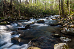 Early Spring on Porters Creek (John Cothron) Tags: longexposure travel usa nature water rock digital creek river landscape morninglight us spring sandstone stream outdoor tennessee unitedstatesofamerica scenic sunny flowing thesouth dixie clearsky ze cpl freshwater seviercounty greenbrier greatsmokymountainnationalpark americansouth southernregion circularpolarizingfilter volunteerstate 35mmformat porterscreek porterscreektrail 5dc johncothron distagont2821 eastsouthcentralstates 5dclassic cothronphotography zeissdistagont21mm28ze 2jtrip2010 ©johncothron img1500100413 earlyspringonporterscreek