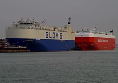 Car carriers (New Forest Man) Tags: champion hampshire solent toreador southamptonwater southamptondocks glovis toteador