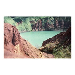 (a l k o i p a) Tags: red wild green film nature grass analog 35mm turquoise fujifilm zenit otranto salento puglia sud pellicola zenitet fujicolorsuperiaxtra400 cavabauxite