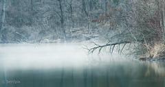Early morning (bertlpix) Tags: morning water fog early wasser nebel kl omd morgens früh em10 weikerlsee