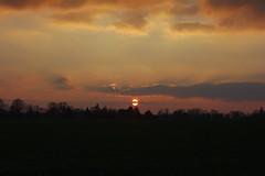 Geteilte Sonne