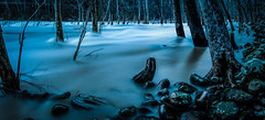 Ghostly Swell (reflectioninapool) Tags: longexposure trees panorama color nature water rock horizontal stone night forest river dark landscape outdoors spring woods stream waves unitedstates flood hiking nobody rapids westvirginia northamerica appalachia hightide newriver lowangle meloncholy ansted