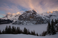 This was winter 2015 (tom.leuzi) Tags: schnee winter sunset sky panorama mountain snow mountains alps cold nature fog clouds landscape schweiz switzerland cool sonnenuntergang nebel view dusk natur himmel wolken berge alpen peaks kalt eiger jungfrau mnch berneroberland mrren silberhorn explored canonef1635mmf4lisusm schwarzmnch canoneos6d