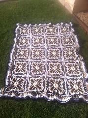 Mary Grinnell (The Crochet Crowd) Tags: crochet mikey cal divadan crochetalong yarnspirations cathycunningham thecrochetcrowd michaelsellick danielzondervan freeafghanpattern mysteryafghancrochetalong freeafghanvideo caronsimplysoftyarn