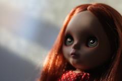 ( Maffy ) Tags: doll blythe prairie custom fa posie sbl bly blythedoll claudinacavaco