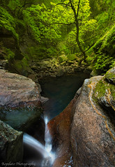 Still Flowing (Jared Ropelato) Tags: california jared green nature northerncalifornia creek river waterfall moss sonoma napa 2015 angwin sainthelena ropelato jaredropelato ropelatophotography