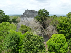 Dzibanche - View from the Top (Toats Master) Tags: archaeology mexico ruins historic mayan costamaya dzibanche