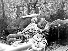 Belgian civilians executed by members of Joachim Peiper's troops of the 1st SS Panzer Division within a day of their murdering 84 Americans captured at Malmedy during the Battle of the Bulge. The civilians were suspected of aiding American troops. Near St (Histolines) Tags: history by during december day belgium 1st near ss captured battle retro american timeline americans were belgian 28 their division joachim troops stavelot 1944 members malmedy panzer bulge within 84 the executed civilians aiding vinatage murdering suspected historyporn peipers histolines 1184x894 httpifttt1x8uftx