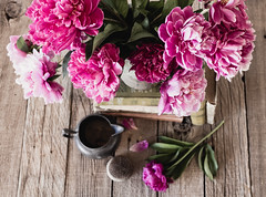 IMG_7665.jpg (coppercurls55) Tags: old pink flowers stilllife flower color colour colors books peony antiques kkdreamlike