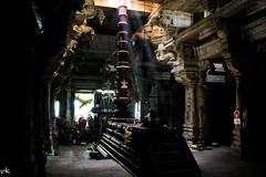 Sun Rays on Nandi (kalaiyappanvenkatachalam) Tags: nandi sunrays  eluvankottai