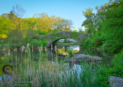Central park Gapstow Bridge on a nice spring day (Singing With Light) Tags: 12th 2016 alpha6000 centralpark gapstowbridge harlemmeer milford mirrorless morningstroll ny nyc singingwithlight sonya6000 thepond manhattan may photography pond singingwithlightphotography sony