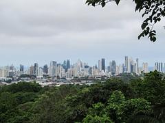 """Vue sur les gratte-ciels de Panama City depuis le Parque Natural Metropolitano <a style=""""margin-left:10px; font-size:0.8em;"""" href=""""http://www.flickr.com/photos/127723101@N04/26727283523/"""" target=""""_blank"""">@flickr</a>"""
