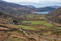 Tilt Shift at Llyn Gwynant (Howie Mudge LRPS) Tags: uk travel trees lake mountains travelling nature water grass wales landscape outside outdoors ngc cymru hills panasonic valley fields bracken snowdonia gwynedd llyngwynant tiltshift m43 mft snowdonianationalpark toyeffect fantasticnature micro43 microfourthirds mirrorlesscamera compactsystemcamera lumixgvario1442f3556ii micro43mountlenses panasonicdmcgx8