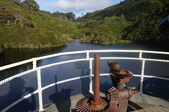 Reservoir crossing (Andos_pics) Tags: newzealand reservoir wellington karori zealandia