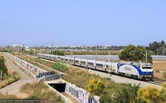 nica en su especie (josep.gonzalez) Tags: barcelona valencia azul train tren grandes vii lineas renfe talgo 252 viladecans euromed