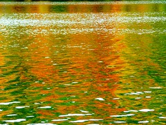 Orange Ripples (Stanley Zimny (Thank You for 19 Million views)) Tags: autumn orange abstract reflection tree fall water seasons