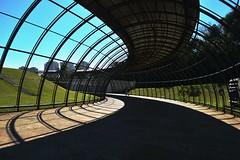 Jardim Botnico Cutitiba (mara.arantes) Tags: light luz botanical shadows geometry arches curitiba curve sombras archiecture gardem