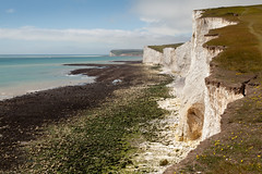 Seven Sisters walk | July 2016-23 (Paul Dykes) Tags: southdowns southdownsway southcoast coast cliffs sea shore coastal englishchannel sussex england uk seaside sun sunnyday chalk downs hills countryside