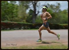 Miguel Mrquez (magnum 257 triatlon slp) Tags: miguel mrquez triatleta talento potosino bh team triathlon atleta sanki triatlon slp seleccinnacional mxico soador parque park tangamanga triathlete miguelmarqueztricom bepartofthebhteam don magnum run pista