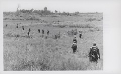 Marines Move Out on Search and Clear Operation, 1969