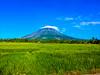 Mt. Mayon (G Creative Media) Tags: morning plant mobile volcano photo phone philippines hill meadow galaxy mayon ricefield s3 mtmayon palay albay