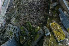 broken concrete (ftrc) Tags: fotostrasse urbanexploration urbandecay urbex felipe tofani abandoned factory abandonedfactory rudersdorf concrete