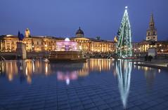 Reflections (AbhijeetVardhan) Tags: christmas longexposure england urban reflection tree london fountain architecture twilight nikon trafalgarsquare nationalgallery bluehour topaz d90 denoise