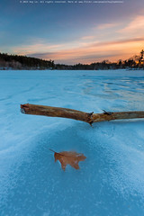 Frozen Lake (Huy Le StreetLife) Tags: winter sunset sky color canon landscape leaf wide 16mm 6d 1635ii