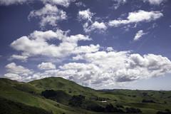 Hillside I (Joe Josephs: 2,861,655 views - thank you) Tags: california fineart naturallight hills pasorobles fineartphotography californiacentralcoast naturephotography travelphotography landscapephotography outdoorphotography joejosephsphotography copyrightjoejosephs2015 joejosephs2015