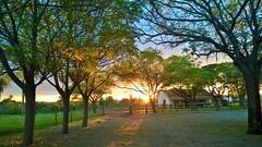 (valdircodinhoto) Tags: sunset naturaleza sol rio del do natureza bonito prdosol jardim da ms puesta ocaso mato sul pantanal tarde grosso prata entardecer maro 2015 mvel dispositivo matogrossense