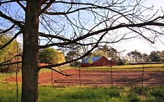 4/30 Barn in the Early Spring (Bella Lisa) Tags: sky tree barn spring farm farmland suwanee duluthgeorgia canon70d