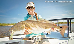 Mosquito Lagoon Redfish Chewed Me Up and Spit Me Out...but It Was Awesome! (skifflife) Tags: redfish mosquitolagoon doalures alissavinoski nativeflycharters nestides rcioptics