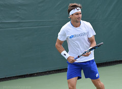 DSC_0006e (CathyGrace) Tags: david ferrer
